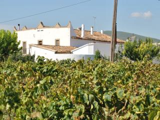 Nice Farmhouse Barn with Internet Access and Wireless Internet - Torrelles de Foix vacation rentals
