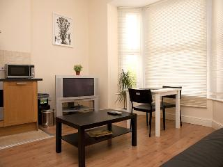 One bedroom Apart, Sleeps 3, 15mins to C.London - Croydon vacation rentals