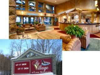 Perfect Condo with Deck and Internet Access - Lincoln vacation rentals