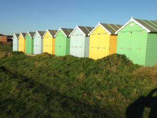 Rustington Seaside Apartment - Rustington vacation rentals