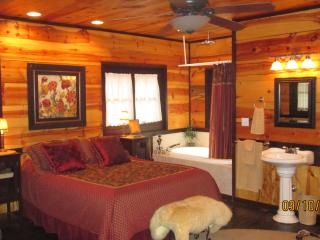 Cabin of Dreams - Hollister vacation rentals