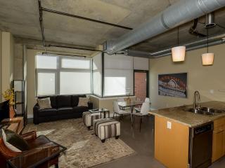 Bright 1 bedroom Denver Apartment with Internet Access - Denver vacation rentals
