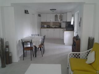 One bedrroom Apartment, Moule a Chique, Vieux fort - Vieux Fort vacation rentals