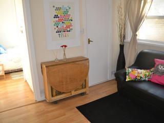 Studio flat 15 minutes to Oxford Circus - London vacation rentals