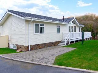 75, en-suite facilities, WiFi, delightful lodge near Wisemans Bridge, Ref. 29433 - Wiseman's Bridge vacation rentals