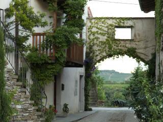 Apartments Dvor, Dobrovo , Slovenia - Dobrovo vacation rentals