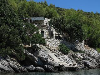 SEAFRONT REMOTE HOLIDAY HOME STUDENA - Cove Puntinak (Selca) vacation rentals