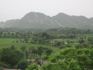 Country house with lovely nature, exotic village - Alwar vacation rentals