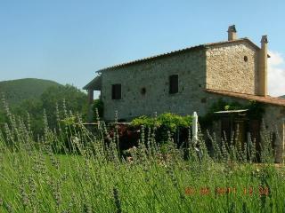 Nice Studio in Tuscany farmhouse sea  view - Castellina Marittima vacation rentals
