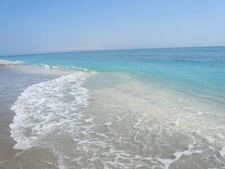 5200 N. Ocean Dr. Apt 102, Singer Island, FL 33404 - Singer Island vacation rentals