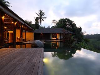 Villa kamaniiya,5 bedrooms Private and luxury - Ubud vacation rentals