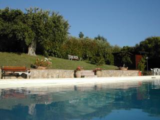 Nice Villa with Internet Access and A/C - Ogliastro Cilento vacation rentals