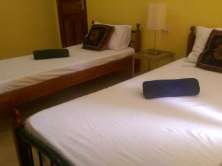 1 bedroom Apartment with Internet Access in Stone Town - Stone Town vacation rentals