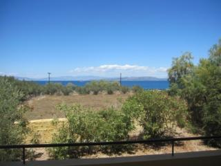 Beautiful 1 bedroom Apartment in Aegina - Aegina vacation rentals