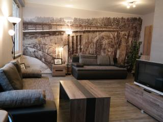 Luxury but affordable apartment in the city centre - Bialystok vacation rentals