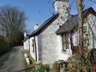 Cottage Bach - Cardigan vacation rentals