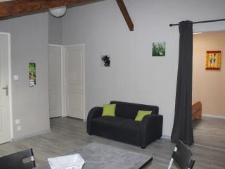 GITE BOUCOU APPARTEMENT LOCATION MEUBLE - Eugenie Les Bains vacation rentals