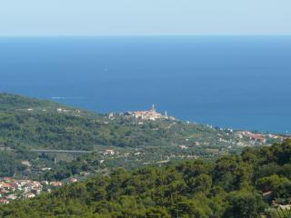 Casa Erbaea - giardino e splendida vista mare - Minipiscina idromassaggio - Diano San Pietro vacation rentals