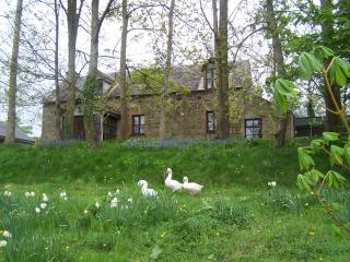 Comfortable Cottage with Internet Access and Satellite Or Cable TV - Inistioge vacation rentals