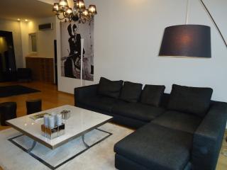Tatiana - Modern Style Best Area - Budapest & Central Danube Region vacation rentals