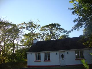 Beautiful House with Outdoor Dining Area and Television - Carndonagh vacation rentals