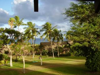 1214 Kepuhi Beach Ocean Front with Car for $150 - Maunaloa vacation rentals
