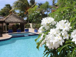 Palm Beach Paradise Villa - Noord vacation rentals
