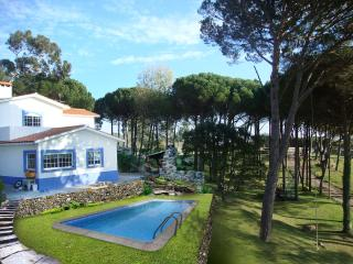 Cozy 3 bedroom Villa in Figueira da Foz - Figueira da Foz vacation rentals