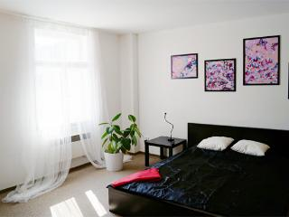 1 bedroom Condo with Internet Access in Prague - Prague vacation rentals