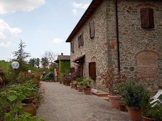 agriturismo PIAN DEL GALLO 2 - Greve in Chianti vacation rentals