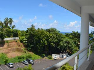Studio Manuia - proche de Papeete - Faaa vacation rentals