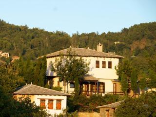 CONTEMPORARY TRADITIONAL VILLA THALIA - Agios Georgios Nilias vacation rentals