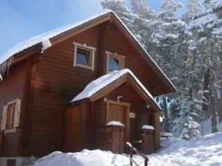 Nice Ski chalet with Internet Access and Satellite Or Cable TV - Agnieres en Devoluy vacation rentals