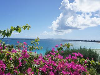 Fabulous studio overlooking Orient Bay, St Martin - Ocho Rios vacation rentals