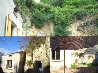 LE TROGLODGE - Montrichard vacation rentals