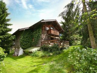 Waldner- Thannrain ~ RA7775 - Neustift im Stubaital vacation rentals