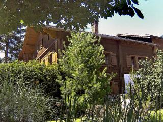 Top 2 ~ RA8109 - Vorarlberg vacation rentals
