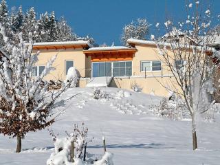 Wohung UG ~ RA8231 - Ossiach vacation rentals