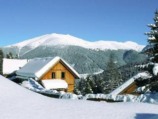Hütte Turrach ~ RA8290 - Turracher Hohe vacation rentals