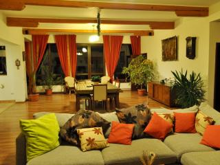 Spacious Cozy Villa, 15 minutes drive to Brasov - Romania vacation rentals