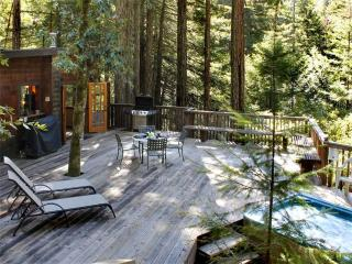 Beautiful 2 bedroom House in Guerneville - Guerneville vacation rentals
