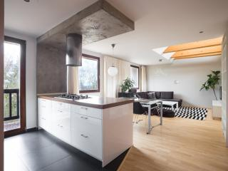 Modern & quiet apartment 17 minutes to center - Prague vacation rentals