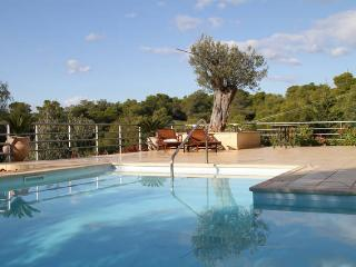 Villa Theros - Port Heli vacation rentals