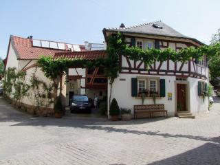 LLAG Luxury Vacation Apartment in Neu-Bamberg - 904 sqft, romantic, cozy, central (# 4864) - Siefersheim vacation rentals