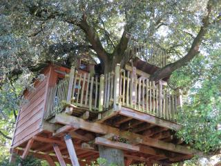 Convenient Tree house with Outdoor Dining Area and Boat Available - Brioux-sur-Boutonne vacation rentals