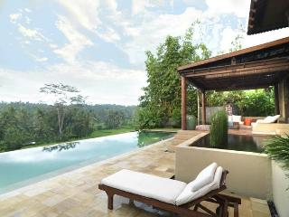 Luxury Villa Gajah Ubud in the rice fields - Ubud vacation rentals