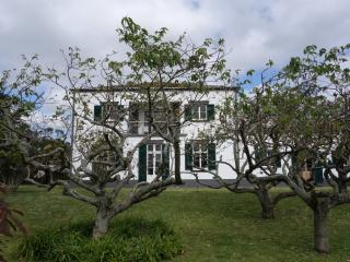 Santa Rita-Quiet just near everything! - Ponta Delgada vacation rentals