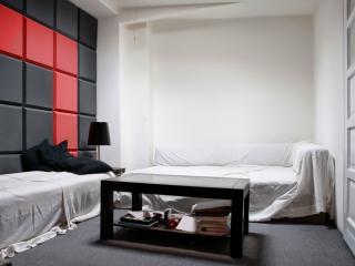 Perfect 3 bedroom Apartment in Sopot - Sopot vacation rentals
