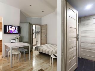 Nice 3 bedroom Condo in Sopot - Sopot vacation rentals