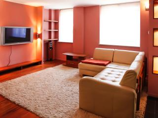 Beautiful 3 bedroom Condo in Sopot with Internet Access - Sopot vacation rentals